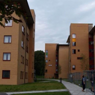 university5jpg20